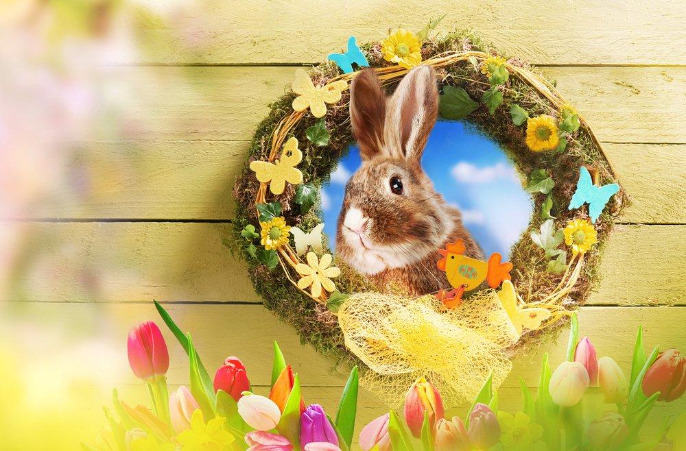 Veľkonočný veniec na dvere so zajacom