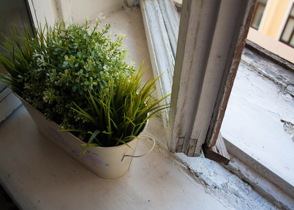 Hygge a zeleň v našich domácnostiach