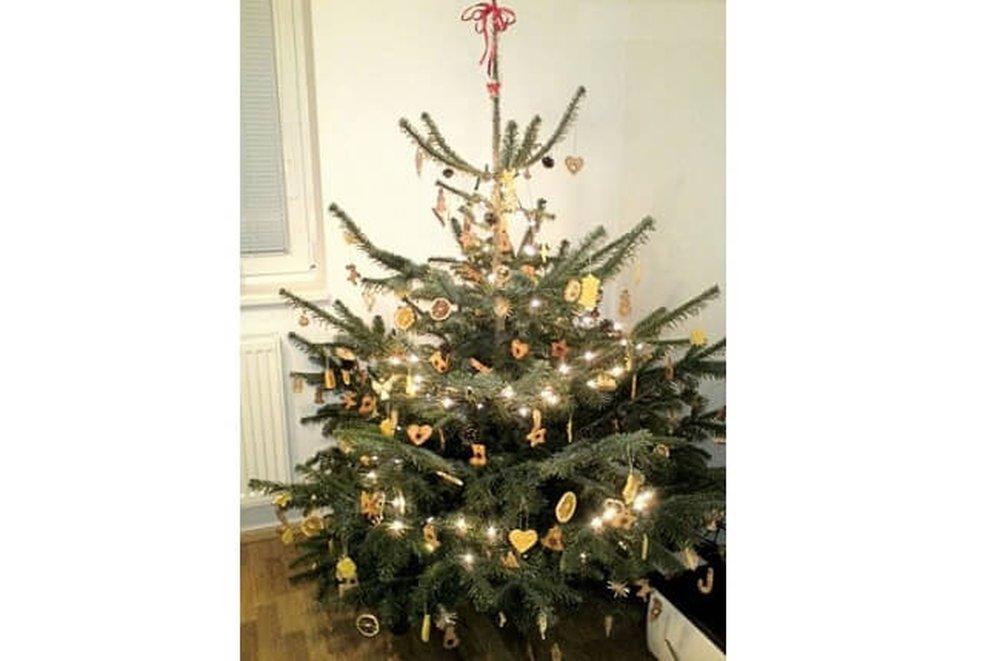 Vianočný stromček s handmade ozdobami