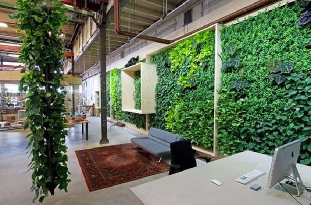 Príroda v kancelárii