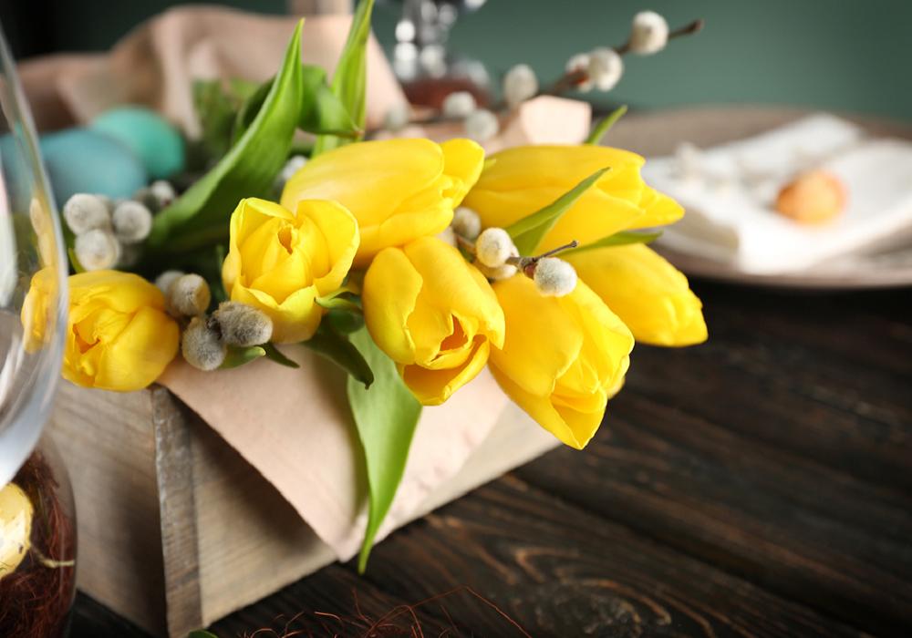 Žlté tulipány v škatuli
