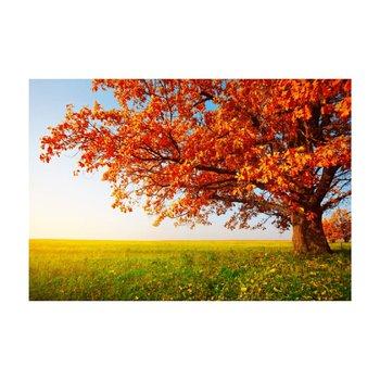 Obraz tlačený na plátno, viacfarebný, 70x105, PK 1000