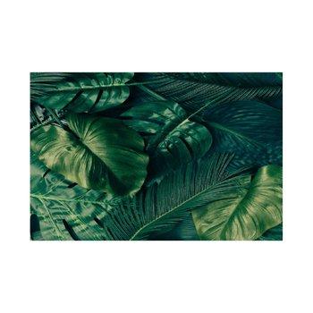 Obraz, tlačený na plátno, 60x90, KV 2006