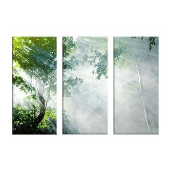 Obraz tlačený na plátno, viacfarebný, 120x80, PK 1001 KLASIK