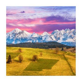 Obraz tlačený na plátno, viacfarebný, 30x30, PK 1010