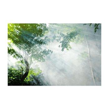 Obraz tlačený na plátno, viacfarebný, 100x150, PK 1001
