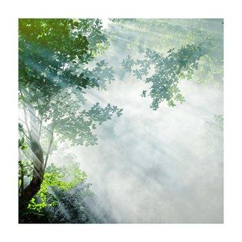 Obraz tlačený na plátno, viacfarebný, 30x30, PK 1001