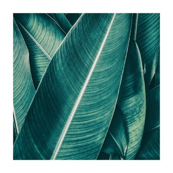 Obraz tlačený na plátno, viacfarebný, 30x30, KV 2008