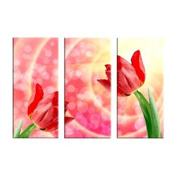 Obraz tlačený na plátno, viacfarebný, 60x40, KV 0306 KLASIK