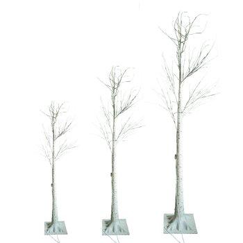 LED vianočné stromčeky, set 3 ks, breza, INGEBORGA