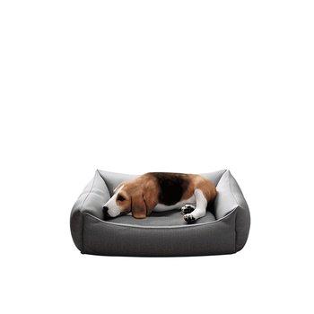 Pelech pre psa, 60 cm, sivá, DOGBED TYP 1